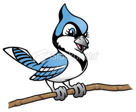 cartoon tattoo artist toronto 17 best images about blue jay on pinterest