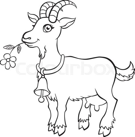 cute goat coloring pages coloring pages animals little cute goat stands and holds