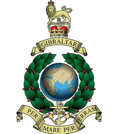 british royal marines insignia royal marines badges et insignes britanniques