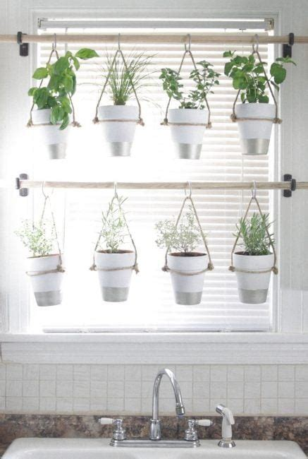 decorar ventanas plantas ideas para decorar ventanas la cartera rota