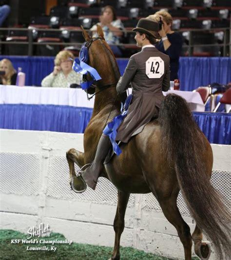 nj teens win  worlds championship horse show  ky