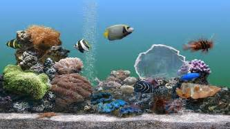 Fish aquarium screensaver free download