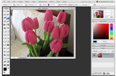 Picnik Image Editor For Basic Photoshop Needs When You Dont Photoshop by Rip Picnik 7 Free Alternatives For Photo Edits