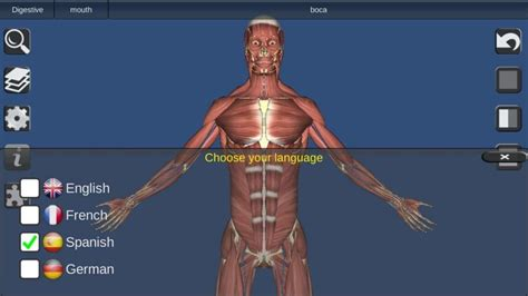 best anatomy software the best 3d anatomy software to use for human research