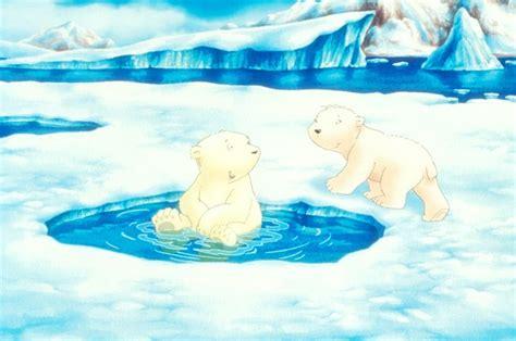 the little polar bear 0735843163 skip das kinomagazin der kleine eisb 228 r