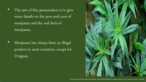 grow ls for weed ls ppt shamini nilamegan shah marijuana