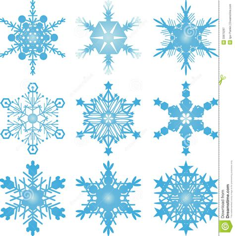 snowflake vectors stock vector image of snow december