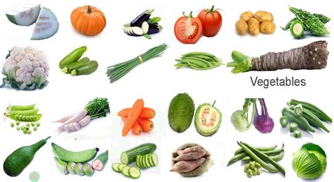 vegetables names all vegetables name images necessary