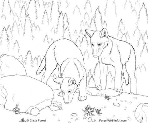 wolf coloring pages games realistic wolf coloring pages az coloring pages