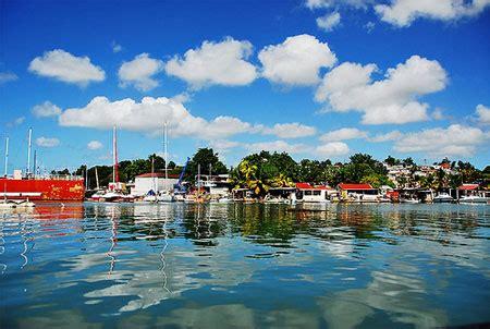 dive francesi isla de guadalupe suny diving travel agency