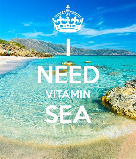 Vitamin Sea i need vitamin sea poster jl keep calm o matic