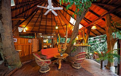 treehouse vacations tree house lodge punta uva holiday home wildcoastcr