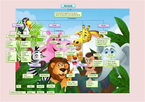 imagenes de ciencias naturales para niños mapa conceptual reinos ciencias naturales