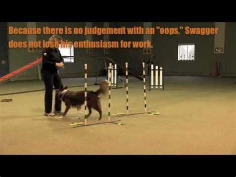pattern games leslie mcdevitt non reward markers in dog training effective use sgda