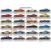 Chevrolet C3 Corvette 1968  1982 Model Chart Poster Stingray