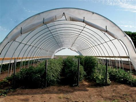 clearspan high tunnel greenhouse dripworkscom