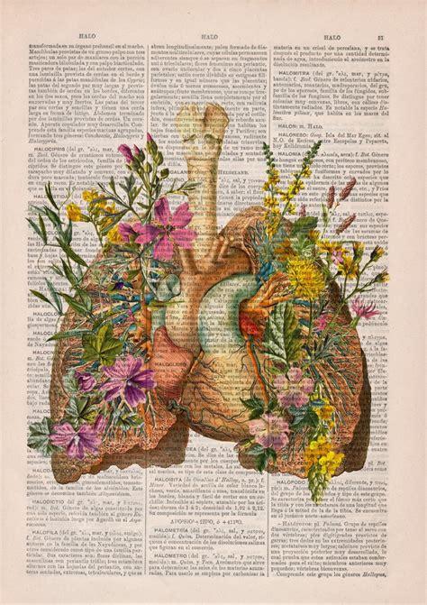 libro flora the art of viendo como estudiante de medicina enfermer 237 a estudiante de medicina