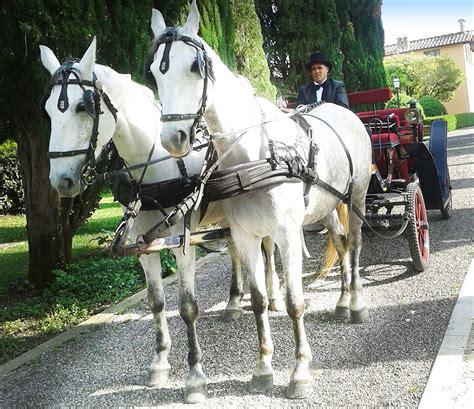 Carrozza Sposi by Carrozza Per Matrimoni Siena Toscana