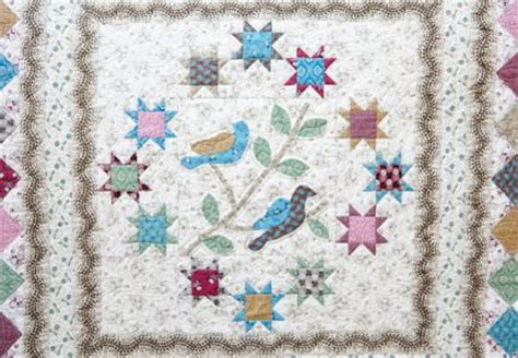 sewing seeds quilt co allpeoplequilt