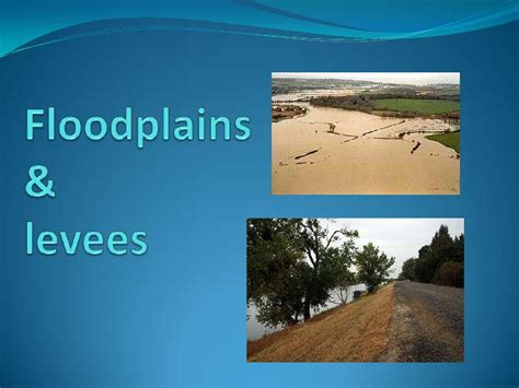 what are floodplans levees and floodplains