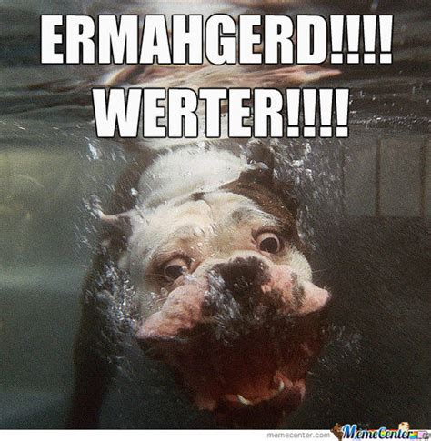 Ermahgerd Animal Memes - ermahgerd by toriblue12052010 meme center