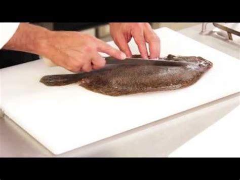 come cucinare una cernia intera tecniche di cucina come sfilettare il pesce affusolato