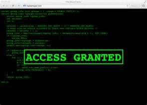 Hacker Typer Tricks Access Granted » Home Design 2017