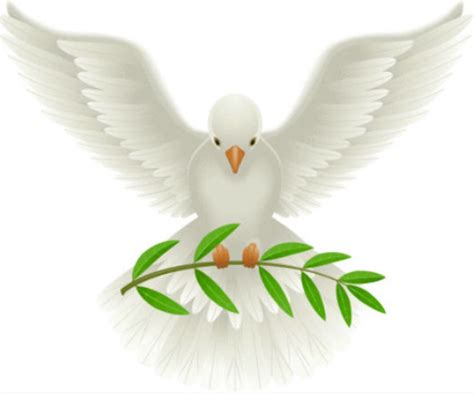 the role of the holy spirit in the church