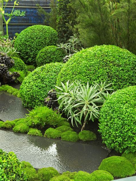 Topiary Gardens by Gorgeous Landscapes Landscaping Ideas And Hardscape