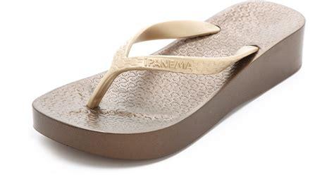 Ipanema Sandal Wanita Tali Polos ipanema wedge flip flops in gold bronze gold lyst