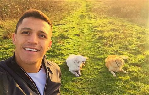 alexis sanchez dogs name alexis sanchez and his dogs atom and humber the greatest