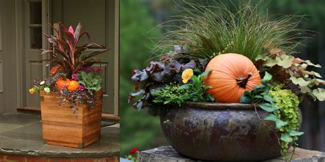 garden ideas for fall bakers garden center fabulous fall container