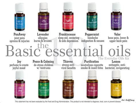 essential oils for everyday household using the best beginners guide book with 50 useful non toxic and time saving home made essential oils recipes essential oils book books living essential oils in malaysia team