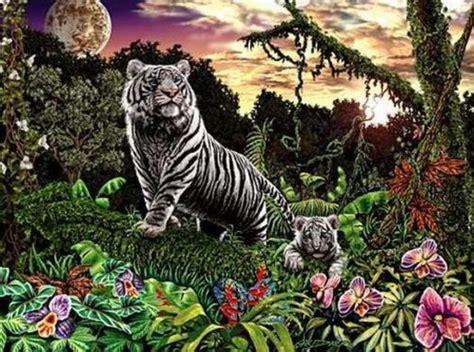 imagenes buscar cosas ocultas find the tigers optical illusion