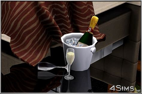 champagne set including bottle ice bucket   glasses  sims  sims