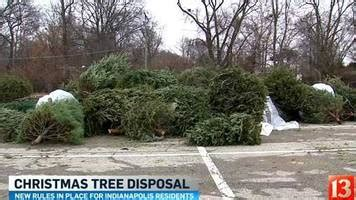 dpw restores christmas tree collection at eight