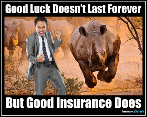 Best 25  Insurance meme ideas on Pinterest   Funny memes