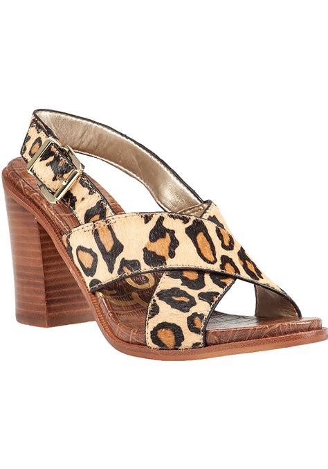 sam edelman leopard sneakers sam edelman leopard print sandals lyst