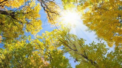 oc housing blog orange county housing report a blazing hot autumn chris samuelson