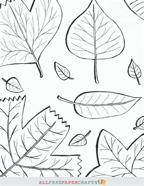 thanksgiving leaf coloring pages cascading fall leaves printable coloring pages