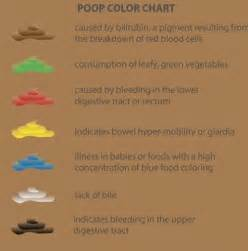 Stool Colors Pictures by Did You Color Chart
