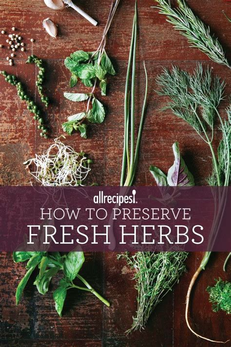 one incredibly easy way to preserve fresh herbs cooking tips tricks pinterest preserve