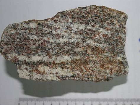 Which Came Granite Or Schist - flashcards metamorphic rocks list flashcards study