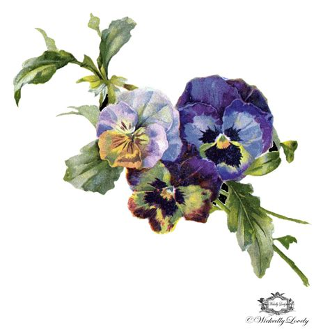 vintage pansies wickedly lovely skin art temporary tattoo