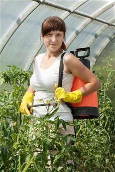 wie kann ich haus kaufen wie wende ich pflanzenschutzmittel im haus und