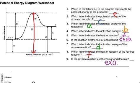 potential energy diagram worksheet potential energy diagram worksheet photos jplew