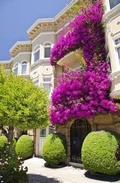 decorar fachadas con plantas fachadas de casas con plantas de flores