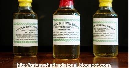 Minyak Urut Tradisional Dayak minyak burung bubut asli kalimantan griya sehat tradisional