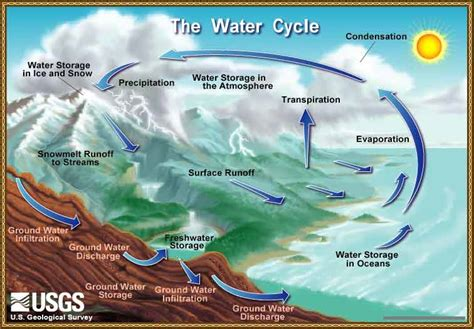a diagram of the water cycle usgs diagram of the hydrologic cycle