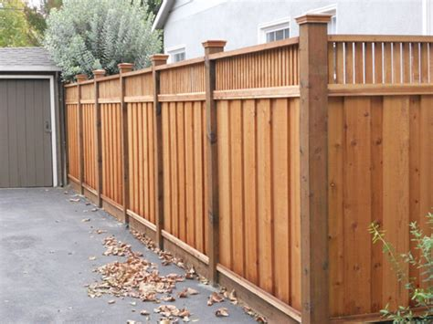 backyard privacy fence landscaping ideas   budget